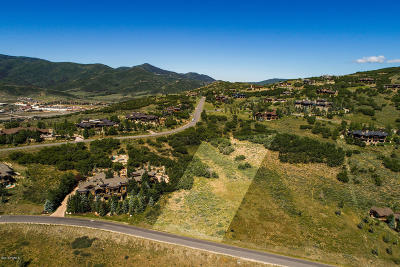 Residential Lots & Land For Sale: 7181 Glenwild Drive