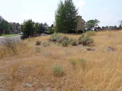 Heber City Residential Lots & Land For Sale: 775 E Lakeview Dr