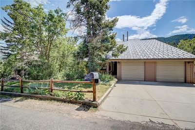 Park City Single Family Home For Sale: 705 Aspen Drive