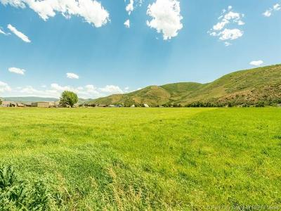 Heber City Residential Lots & Land For Sale: 315 W 3000 S
