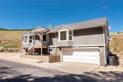 Park City Single Family Home For Sale: 391 Aspen Drive