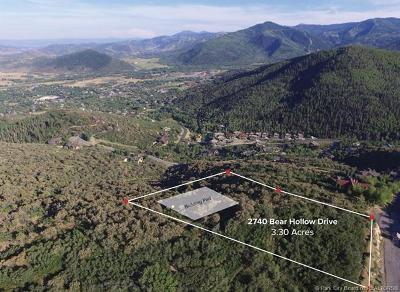 Residential Lots & Land For Sale: 2740 Bear Hollow Drive