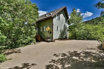Midway Single Family Home For Sale: 1885 W Upper Canyon Drive