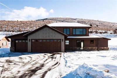 Single Family Home For Sale: 608 Thorn Creek Drive