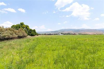 Heber City Residential Lots & Land For Sale: 1500 S 3600 East