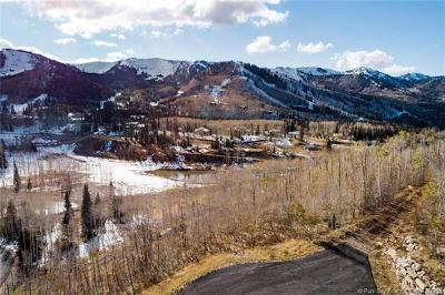 Residential Lots & Land For Sale: 246 White Pine Canyon Road