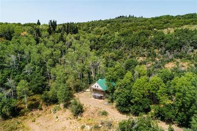 Park City Single Family Home For Sale: 1407 Lower Cove Road