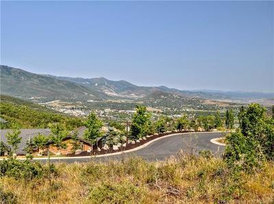 Residential Lots & Land For Sale: 85 Hidden Oaks Lane