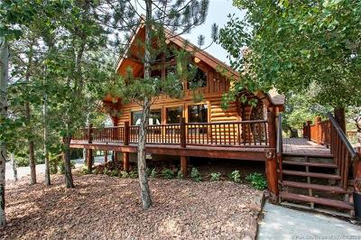 Heber City Single Family Home For Sale: 742 S Pole Drive