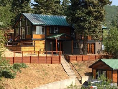 Park City Single Family Home For Sale: 120 Aspen Lane