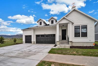 Single Family Home For Sale: 693 S Appenzell Lane