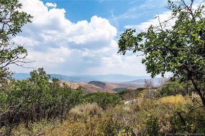 Residential Lots & Land For Sale: 8139 N Sunrise Loop