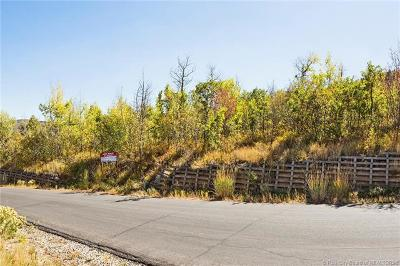Residential Lots & Land For Sale: 2428 Iron Mountain Drive