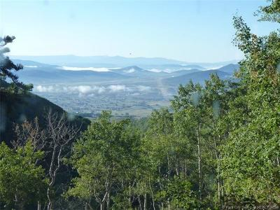 Park City Residential Lots & Land For Sale: 10191 Kimball Canyon Road