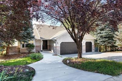 Heber City Single Family Home For Sale: 702 E Valley Drive