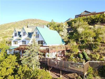 Single Family Home For Sale: 245 Big Matterhorn Circle
