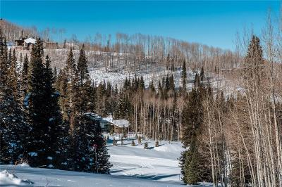 Residential Lots & Land For Sale: 302 White Pine Canyon Road