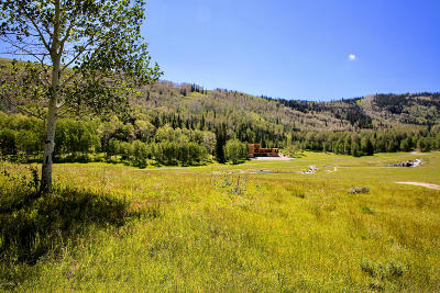 Residential Lots & Land For Sale: 303 White Pine Canyon Road