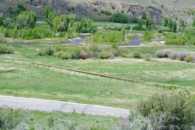 Heber City Residential Lots & Land For Sale: 6050 E Green Drake Drive