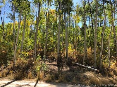 Heber City Residential Lots & Land For Sale: 10818 E Tanglewood Drive