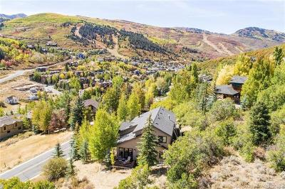 Single Family Home For Sale: 606 Mellow Mountain Road