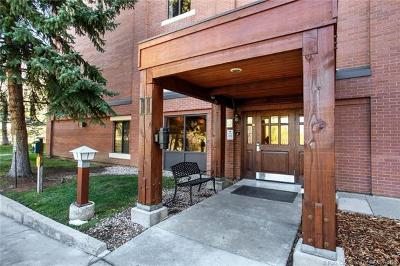 Park City Condo/Townhouse For Sale: 950 Park Avenue #224