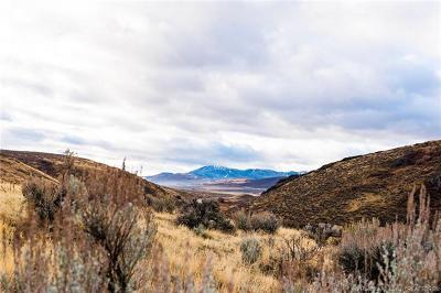 Park City Residential Lots & Land For Sale: 955 E Canyon Gate Road