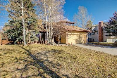 Park City Single Family Home For Sale: 950 E Williamstown Ct
