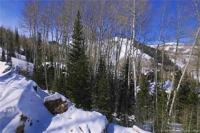 Park City Residential Lots & Land For Sale: 85 Silver Strike Trail
