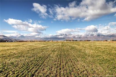 Heber City Residential Lots & Land For Sale: 2333 E Wild Mare Way