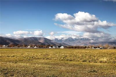 Heber City Residential Lots & Land For Sale: 1596 S 2240 East