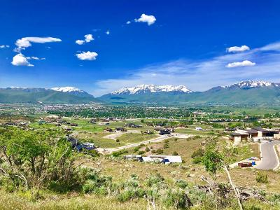 Tuhaye, Red Ledges Residential Lots & Land For Sale: 1417 N Gold Mountain Cir (Lot 467)