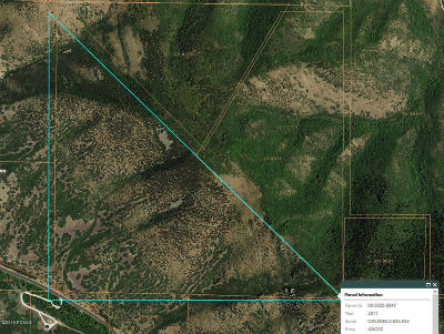 Residential Lots & Land For Sale: 6937 S Hwy 40