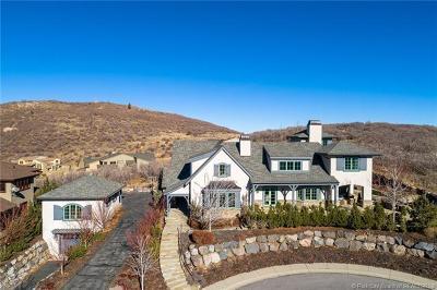 Single Family Home For Sale: 1511 Seasons Drive