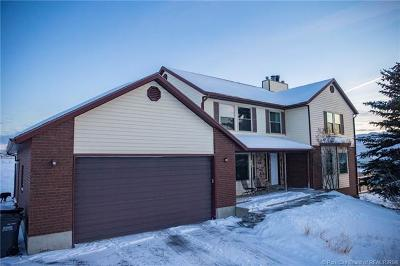 Park City Single Family Home For Sale: 7828 N. Silver Creek Road