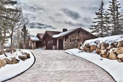 Park City Single Family Home For Sale: 1107 Snow Berry Street