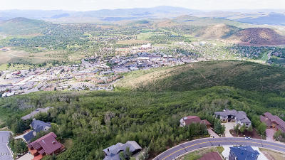 Park City Residential Lots & Land For Sale: 1362 Aerie Drive
