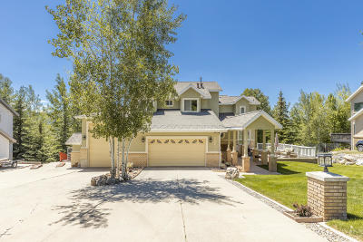 Park City Single Family Home For Sale: 9005 Daybreaker