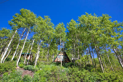 Single Family Home For Sale: 1562 W Marmot