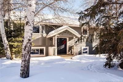 Single Family Home For Sale: 2538 Little Kate Road