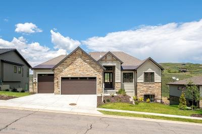 Single Family Home For Sale: 13215 E Alexis Drive