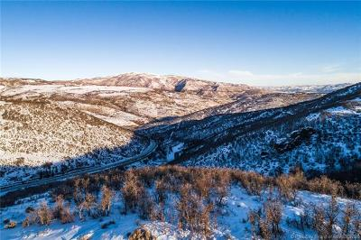 Park City Residential Lots & Land For Sale: 3113 Crosstie Court