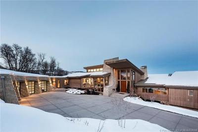 Park City Single Family Home For Sale: 985 Primrose Place