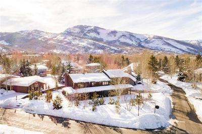 Park Meadows Single Family Home For Sale: 2650 Little Kate