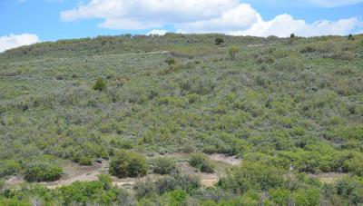 Heber City Residential Lots & Land For Sale: 2131 S Westview Drive
