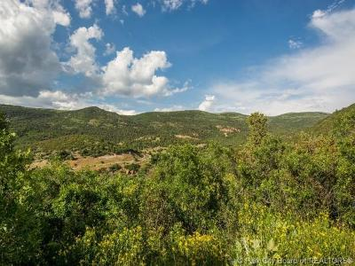Heber City Residential Lots & Land For Sale: 8423 E Lake Pines Drive