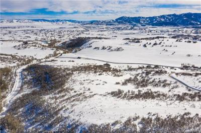 Residential Lots & Land For Sale: 9581 N Kimball Canyon Road
