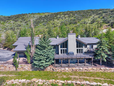 Park City Single Family Home For Sale: 2580 E Bear Hollow Drive