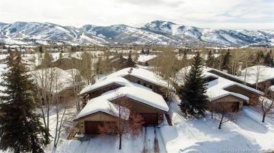 Condo/Townhouse For Sale: 2794 Estates Drive #33B