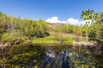 Park City Residential Lots & Land For Sale: 2625 Aspen Springs Drive